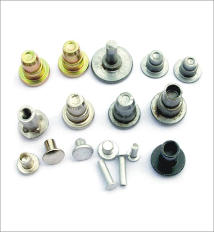 [Hot Item] Flat Round/ Countersunk/Pan Head Solid Rivets (CH-RIVET-008)