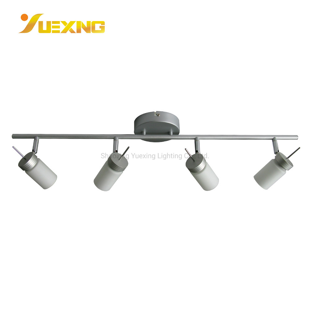 China 20w Led Dimmable Track Light 4