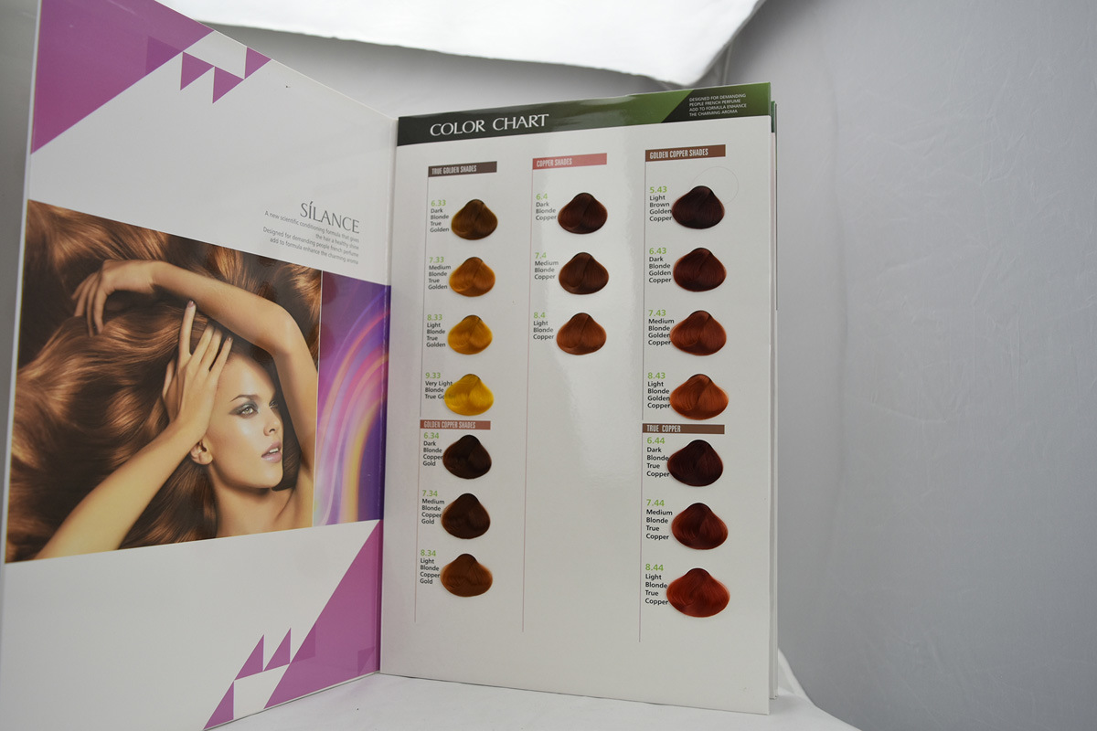 China Silance Hair Color Chart Agents Wantedprivate Label Photos