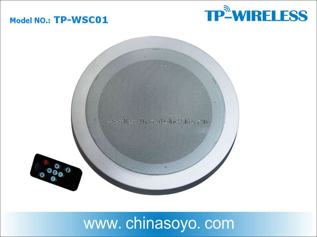 2.4G Digital Wireless Speaker (TP-WSC01)