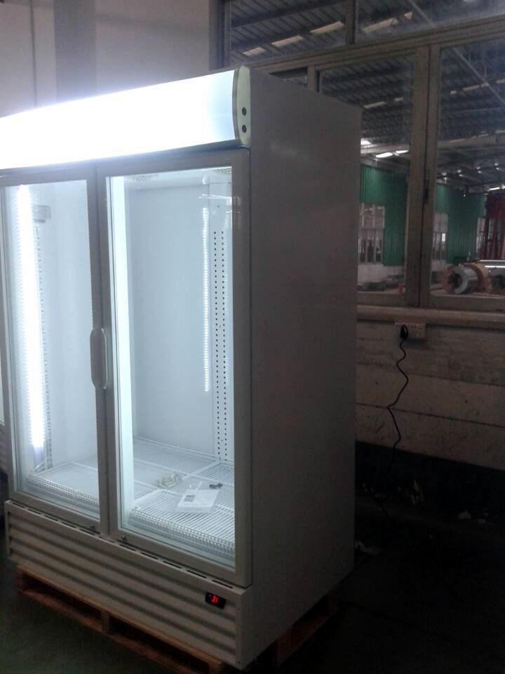Commercial Upright Double Glass Doors Cold Coke Display Fridge