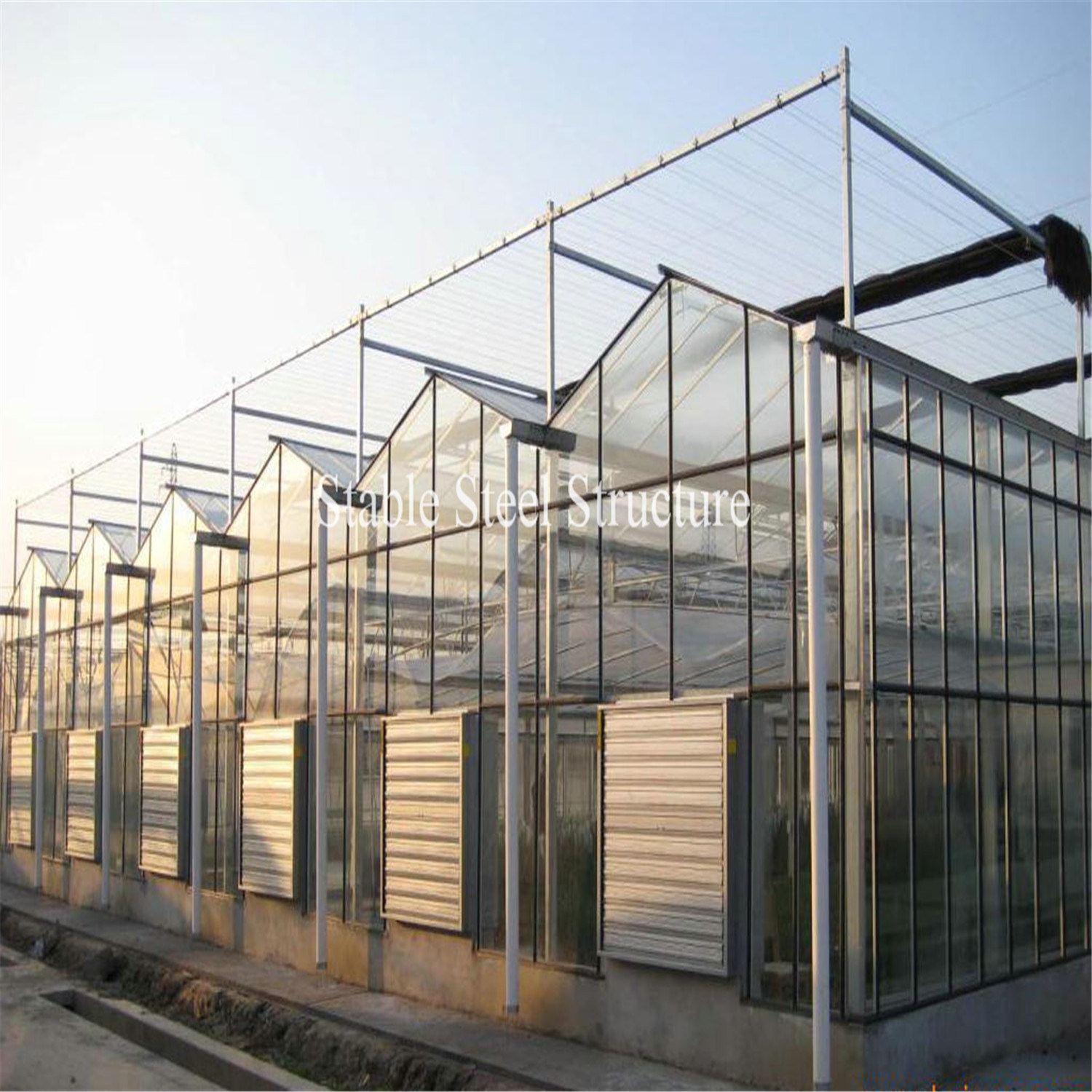 Beautiful and Practical Venlo Glass Greenhouse