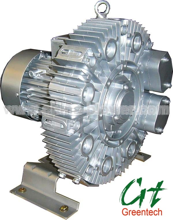 Side Channel Blowers (Ring Blowers)
