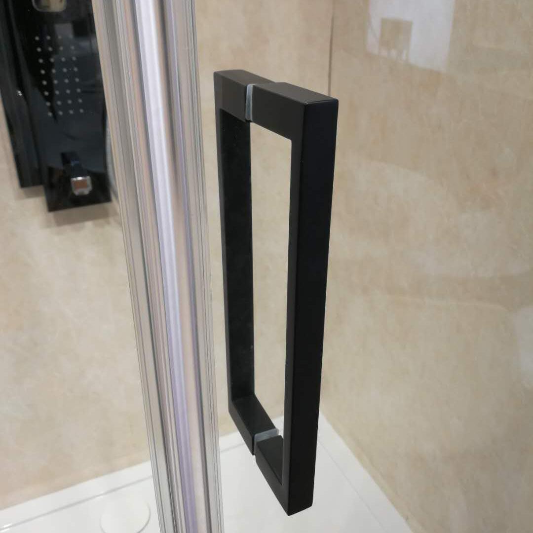 China Black Frameless Stainless Steel Hinge Door 10mm Glass