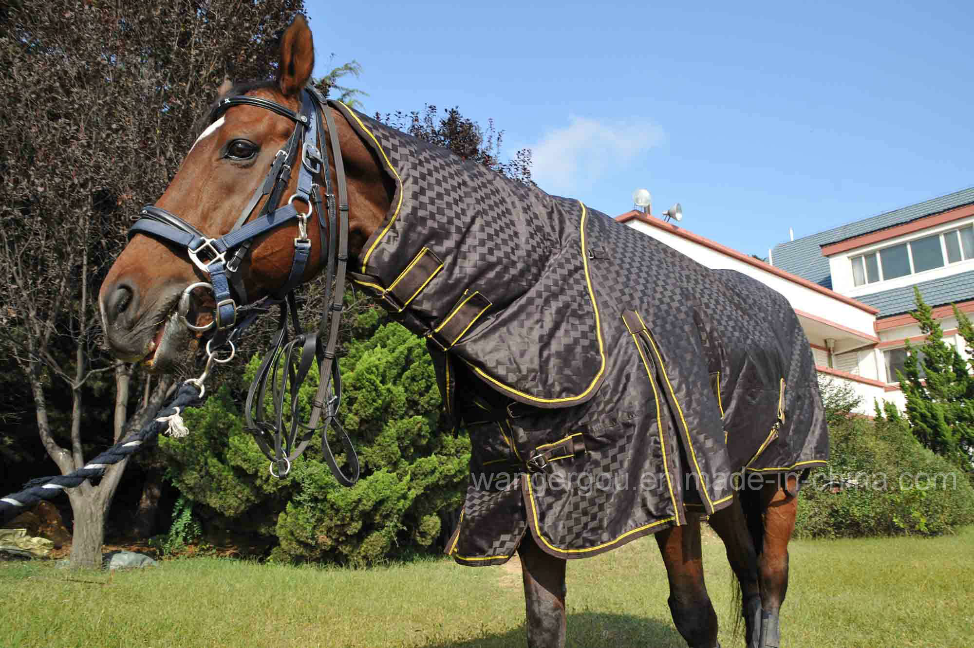 China Winter Horse Turnout Blanket