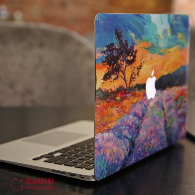 China DIY Laptop&Mobile Sticker Design Templates Software
