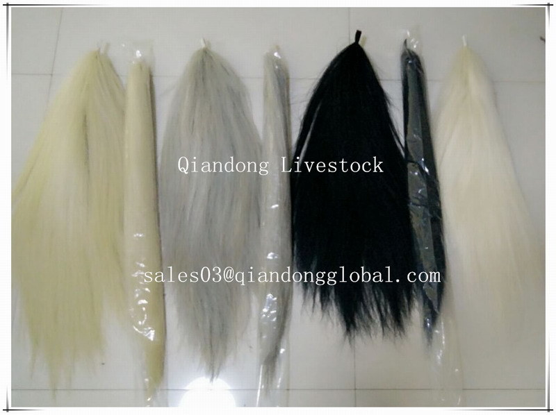 China Good Quality Moderate Price Horse Hair Extensions Beautiful