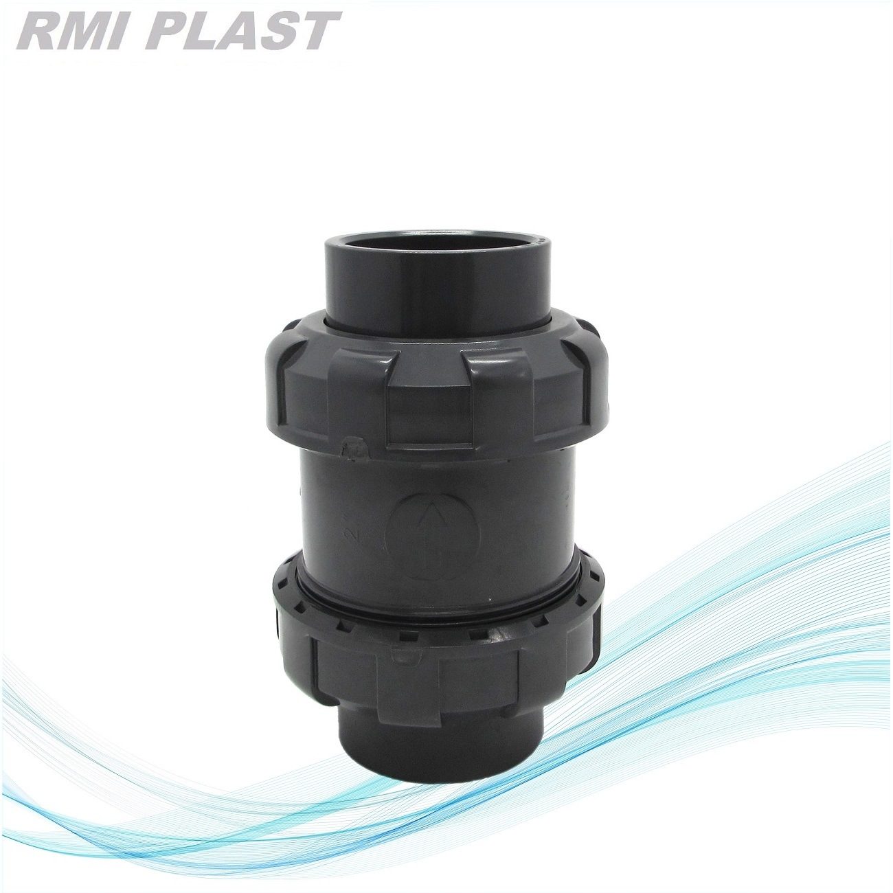 PVDF Pph CPVC PVC Check Valve pictures & photos