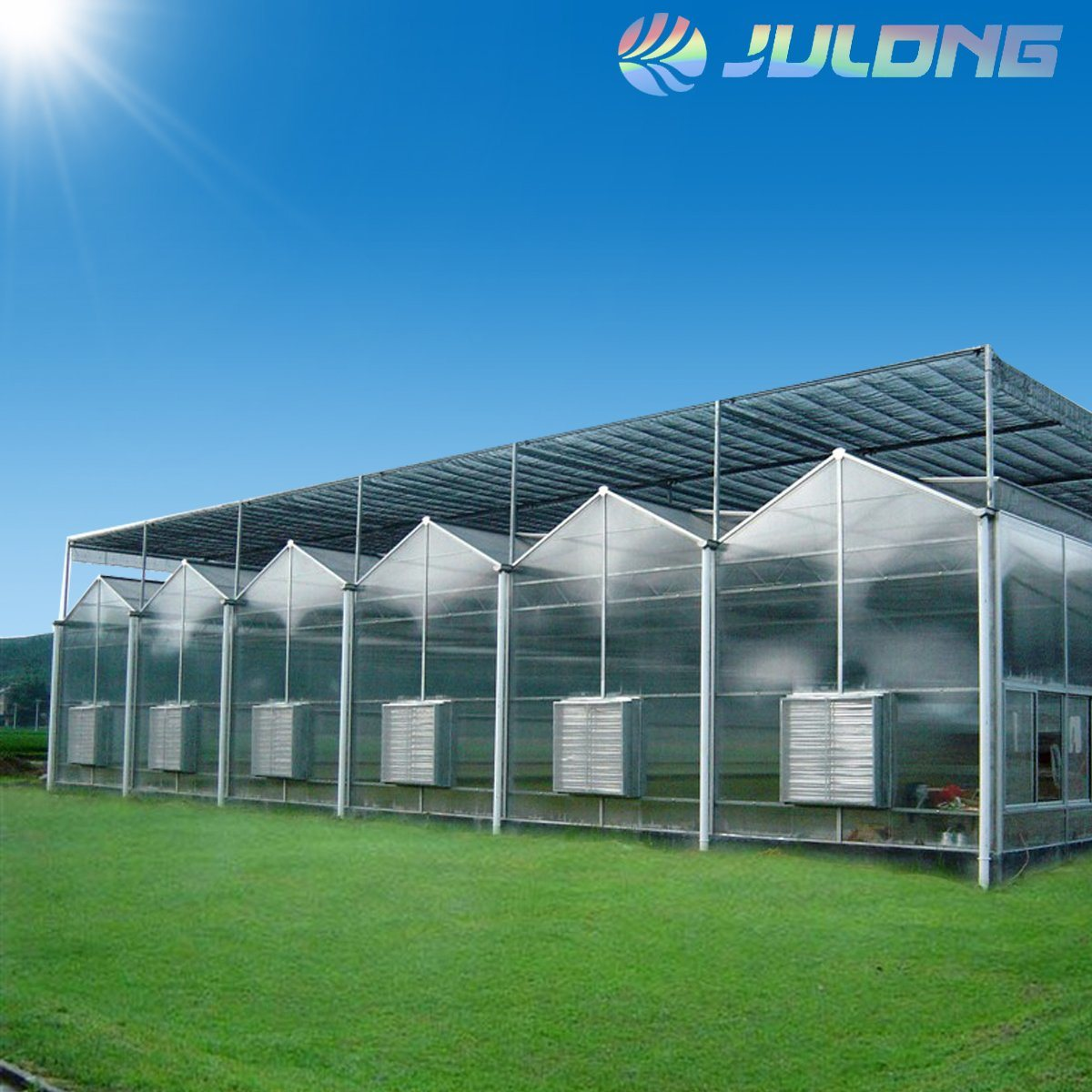 [Hot Item] 2019 Commercial Used Film Greenhouse with Coco Coir Substrate