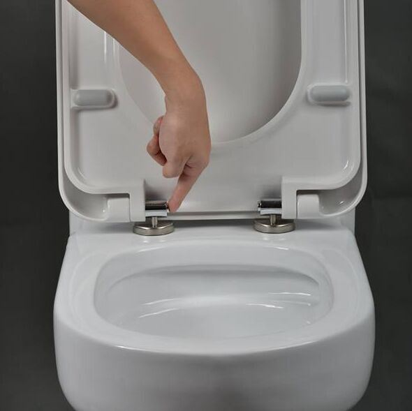 Ceramic Quick Release Toilet Seat Cover Bath Toilet