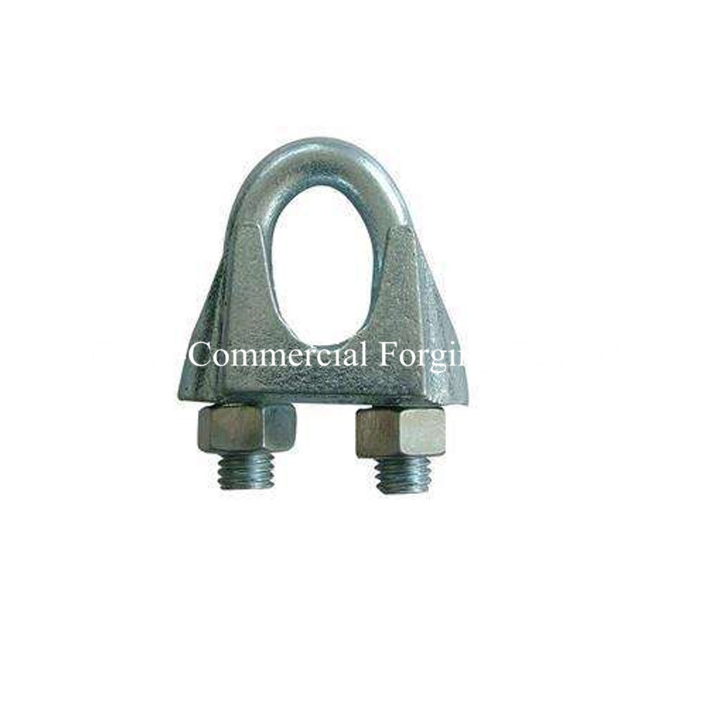 China Electro Galvanized or Hot Galvanized Wire Rope Clips - China ...