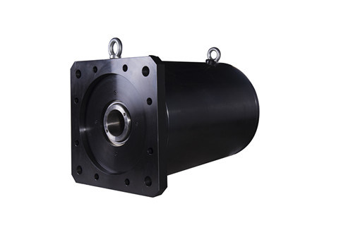 Dynamic Brushless Servo Motor