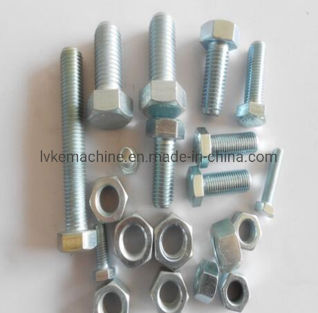 Fasteners Stainless Steel Hex Head Screw/Hexagon Bolt and Nut pictures & photos