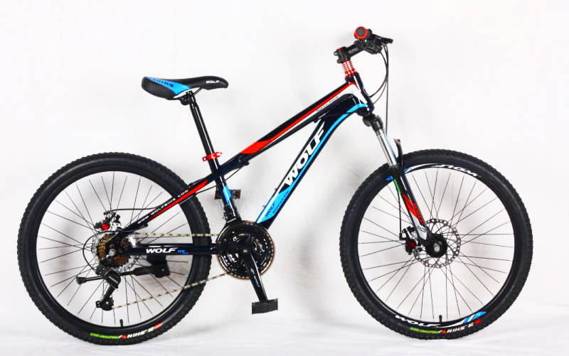 Hot Sale Popular Mountain Bike (MTB-013)