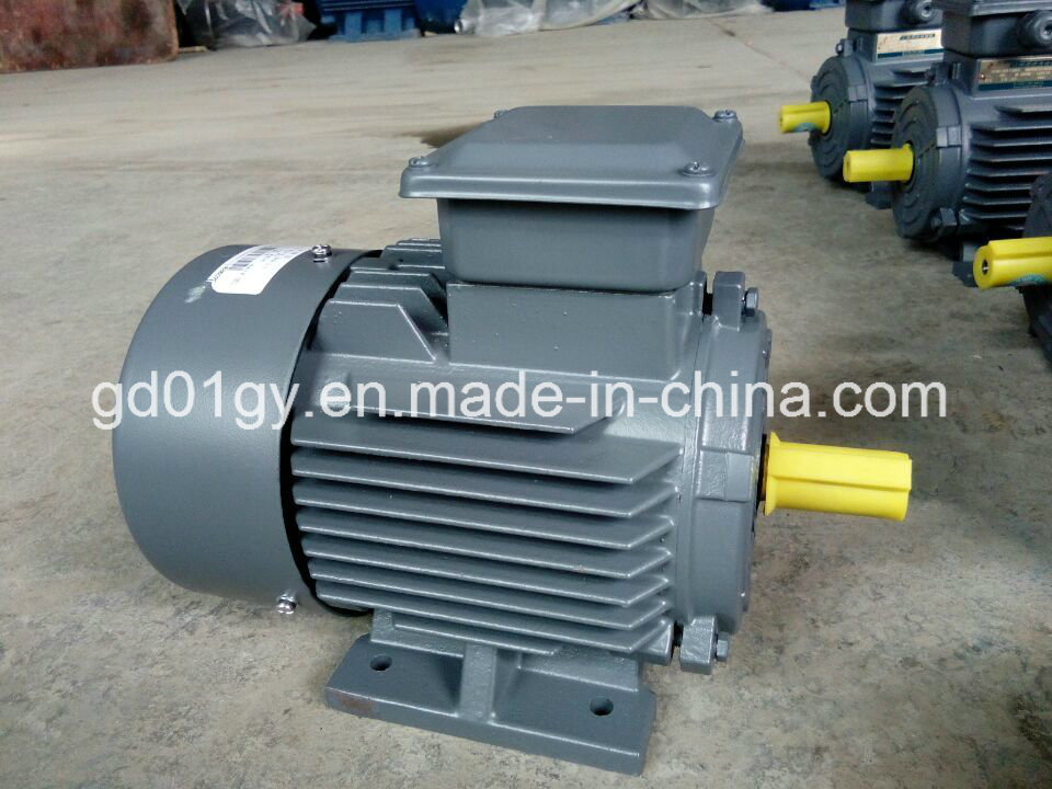 China 100% Copper Wire Winding Cast Iron 3 Phase Asynchronous AC ...