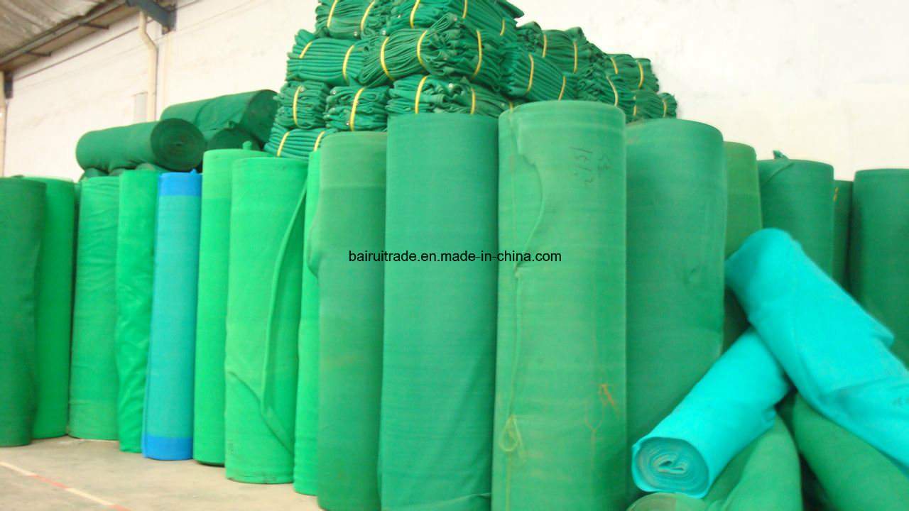 Scaffold Building Green Construction Scaffolding Net for Export pictures & photos