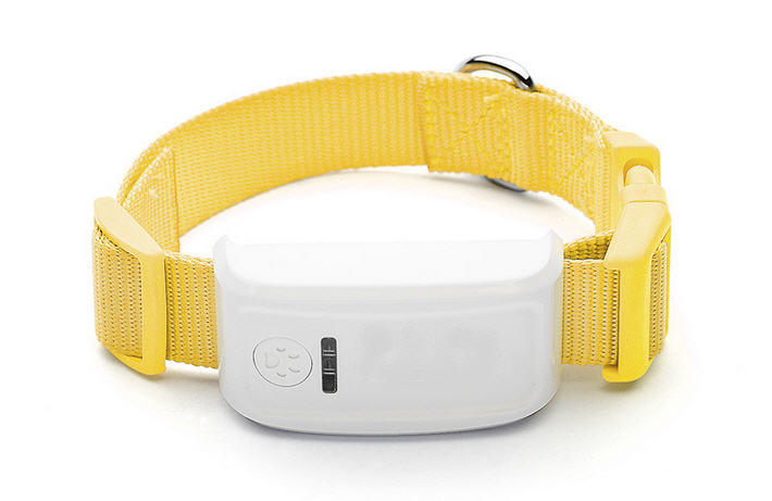 Real Time GPS Tracker for Pets Tracking