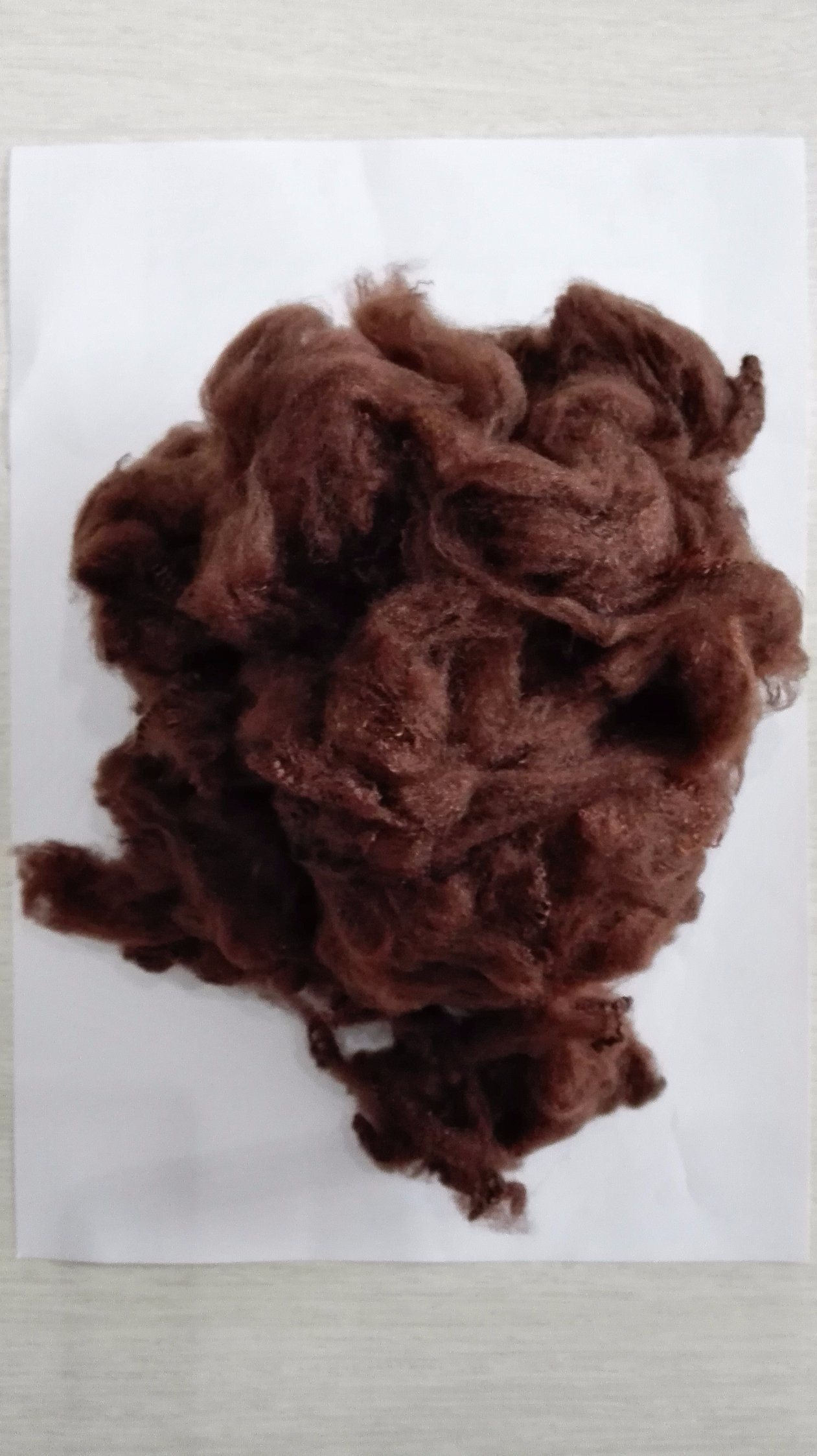Solid Polyester Staple Fiber-Green pictures & photos