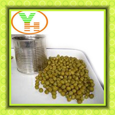 Canned Green Peas in Dubai Just From Green Peas in Peas