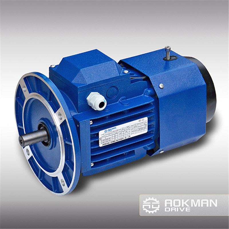 Qualified AC Gear Motor with Competitive Price pictures & photos