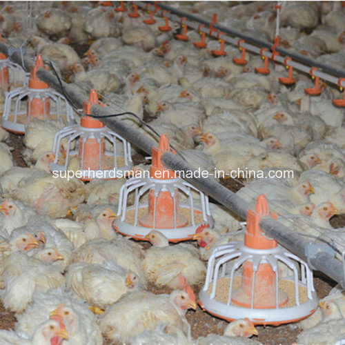 Customized Poultry House Construction with Steel pictures & photos