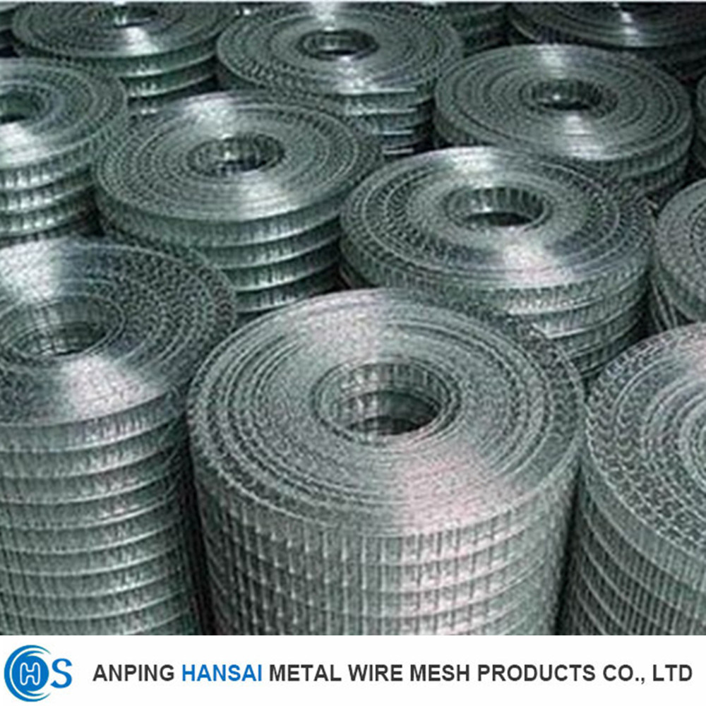 China OEM Electro Galvanized Welded Wire Mesh for Cages - China ...