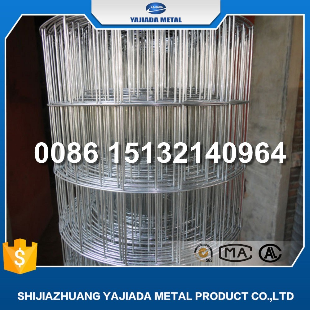 China Manfuacture for Galvanized Wire Mesh Welded Mesh Fence - China ...