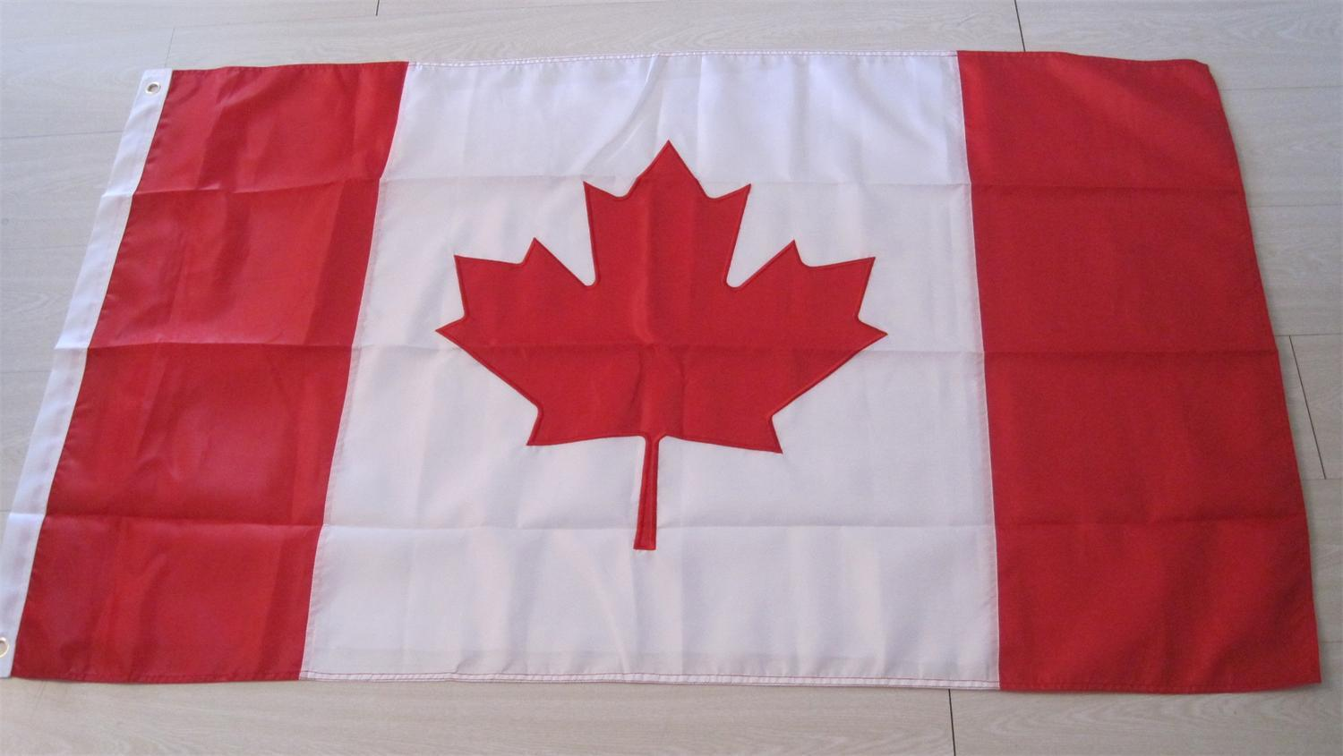 Embroidery Custom National State Outdoor Embroidery Flag (0001) pictures & photos