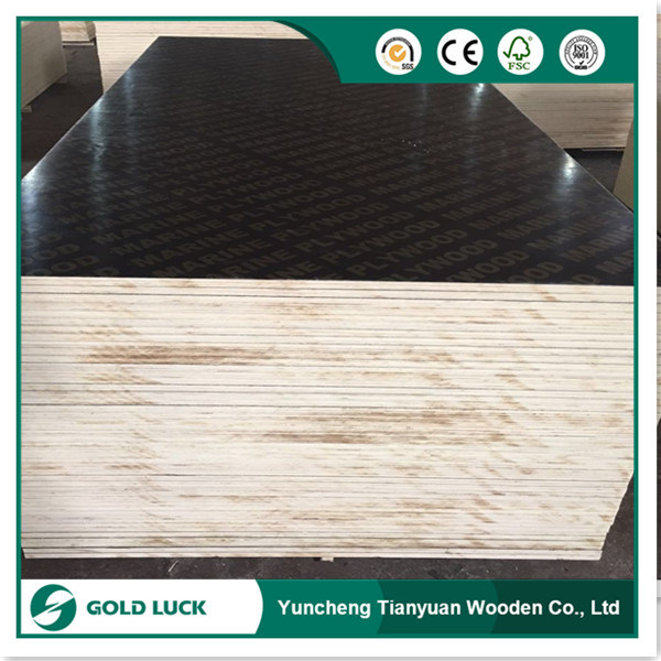 China 18mm Black Film Faced Plywood For Outdoor Use Sheet Gold Luck