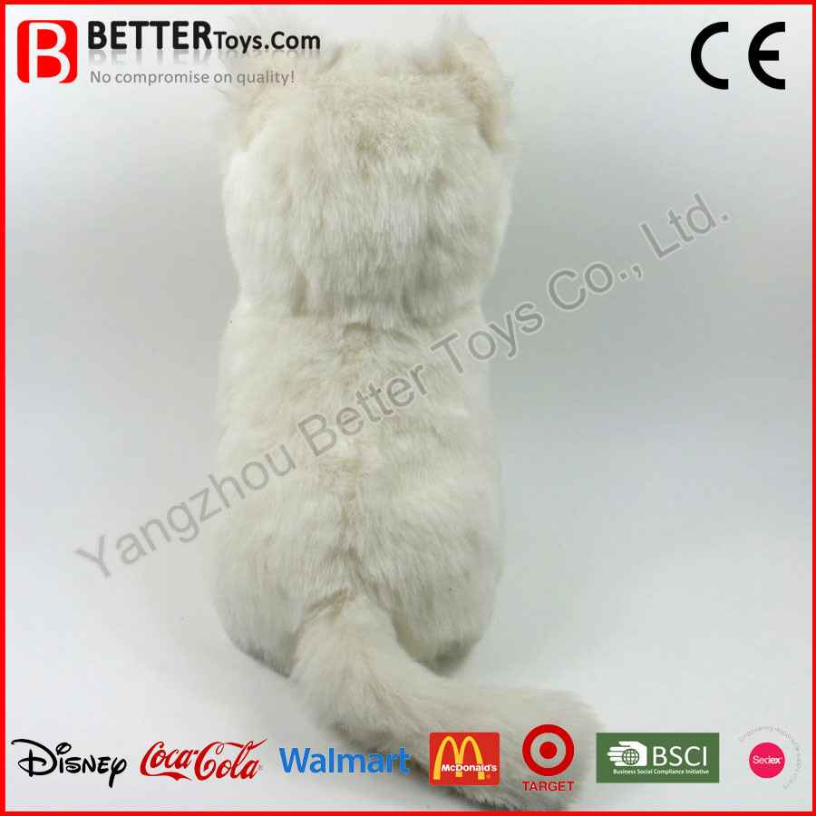841a6f1426b8 China En71 Soft Stuffed Animal White Cat Plush Toy for Kids Photos ...