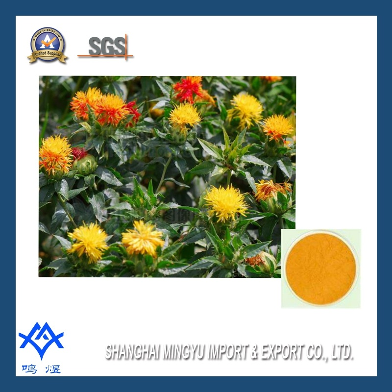 china natural plant extract safflower yellow colorant china safflower carthamus