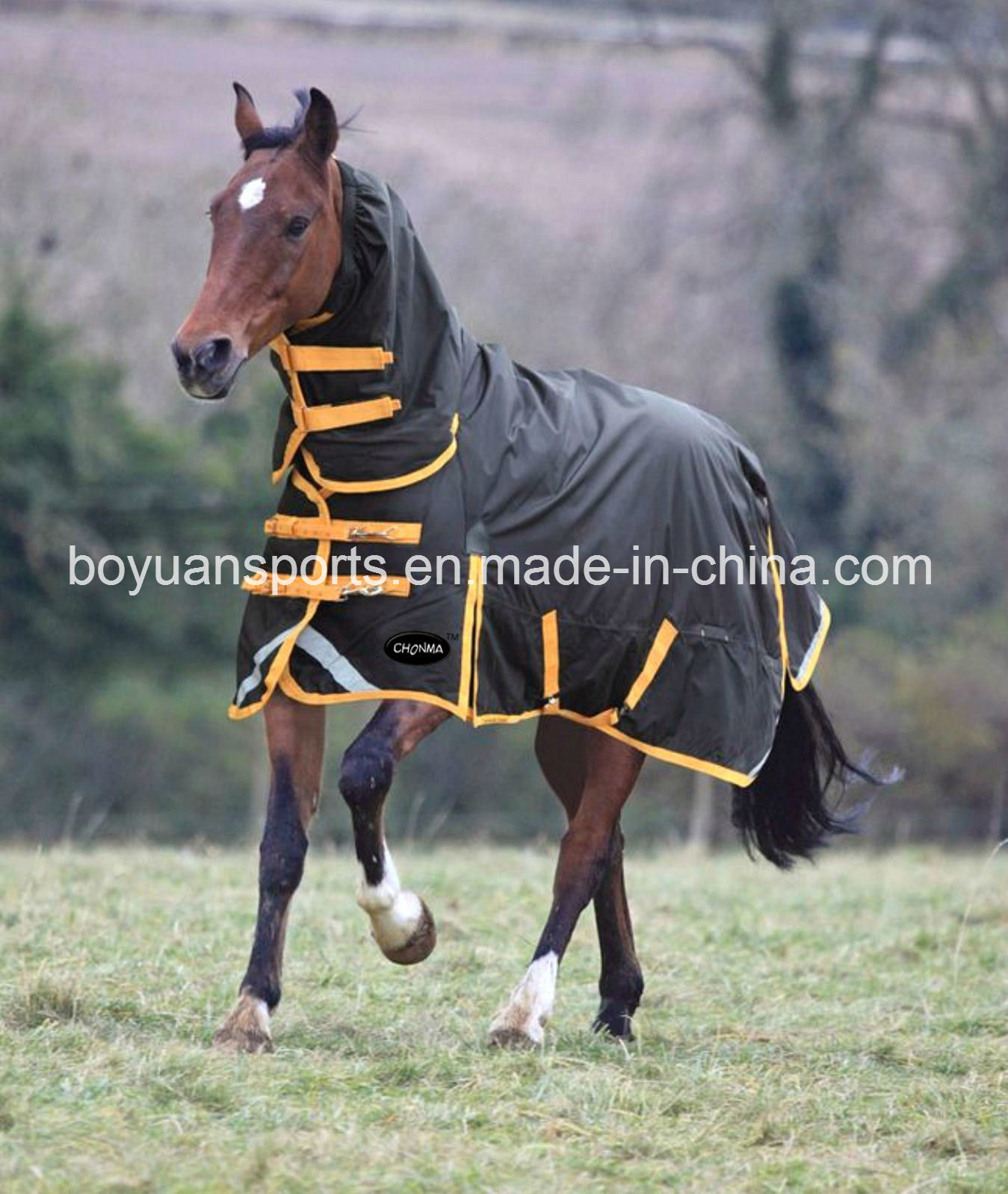 China Hot S For Winter Horse Rug