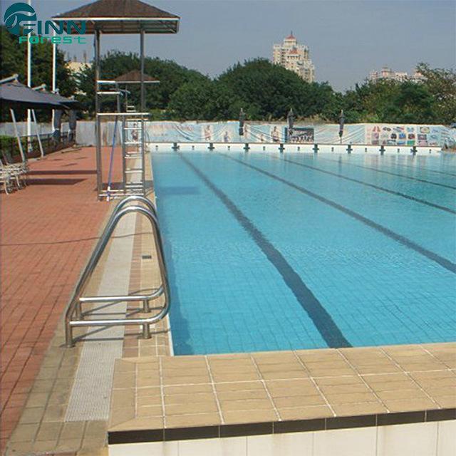 [Hot Item] Factory Price Swimming Pool Equipment Stainless Steel Handrail
