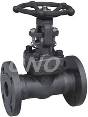 Forged Steel Flanged End Gate Valve
