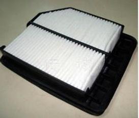 Air Filter for Honda (17220-RNA-A00)