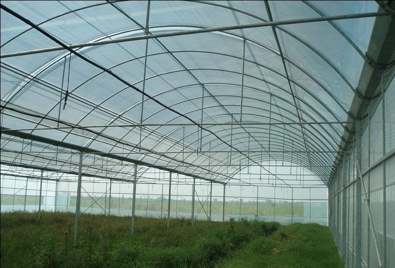 Anti Hail Netting for Vegetable Greenhouse pictures & photos