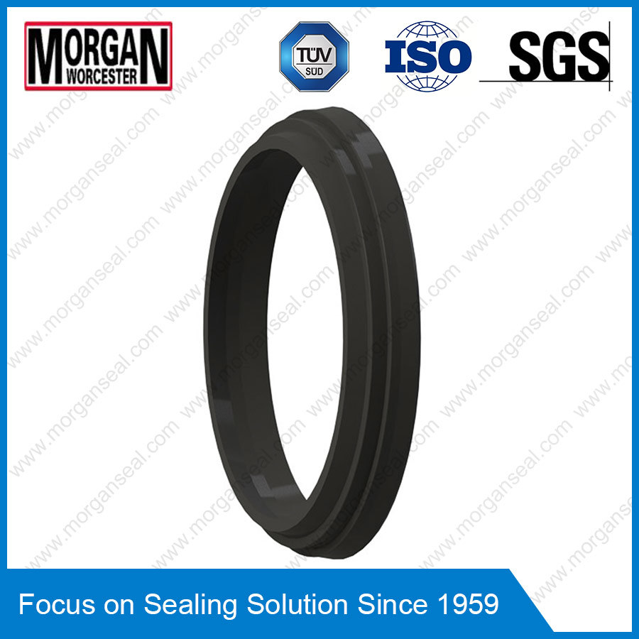 Da17/P8 Profile Double Acting Wiper Seal Scrapers/Dust Seal