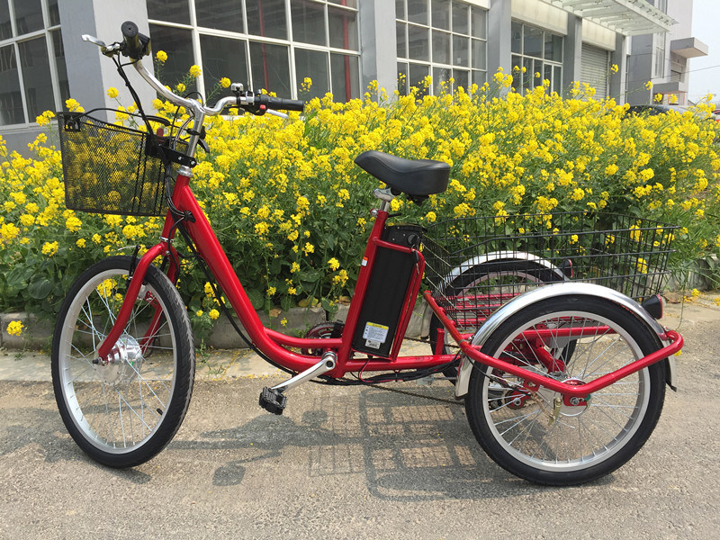 2017 Hot Sale Electrci Trike 3 Wheel E Tricycle with Big Basket pictures & photos