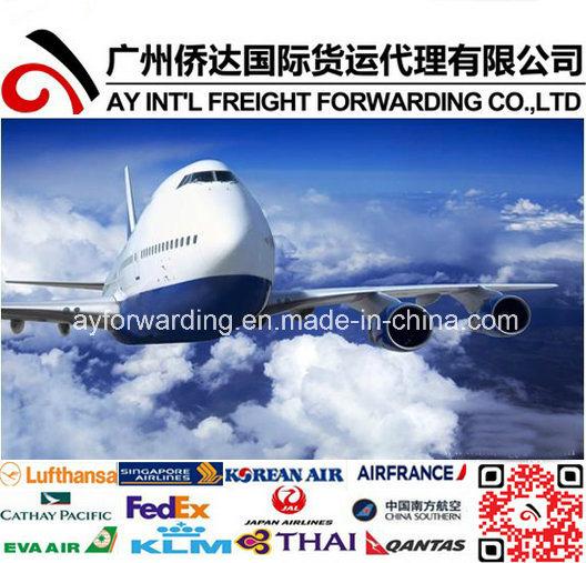 Air Transportation Service to Hamilton From China - China