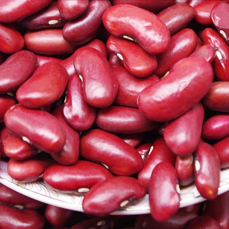 China Wholesale Organic Dark Red Kidney Beans - China Hot Sale Red ...