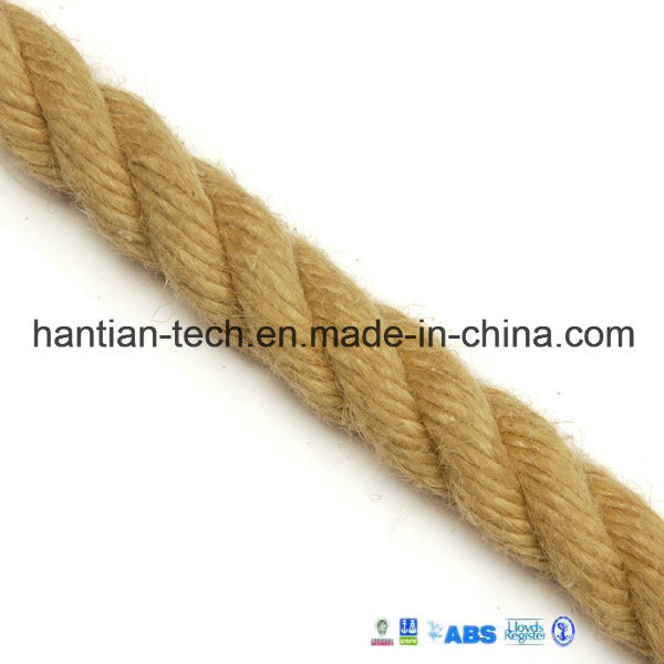 [Hot Item] Different Diameter Decorative Rope Made by Natural Fiber