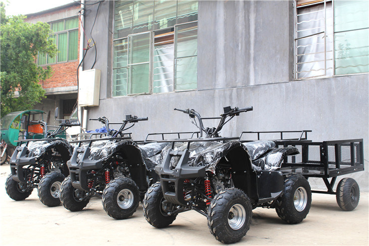 4 Wheelers Beach Vehicles