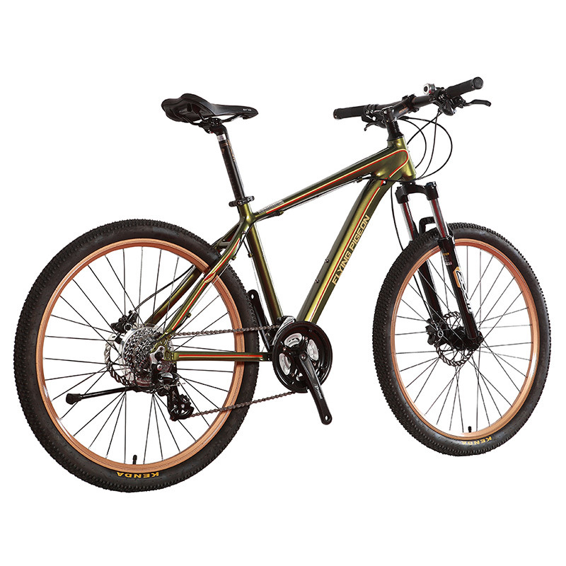 24 Speed Aluminum Alloy Castro Style Mountain Bike (FP-MTB-A01)