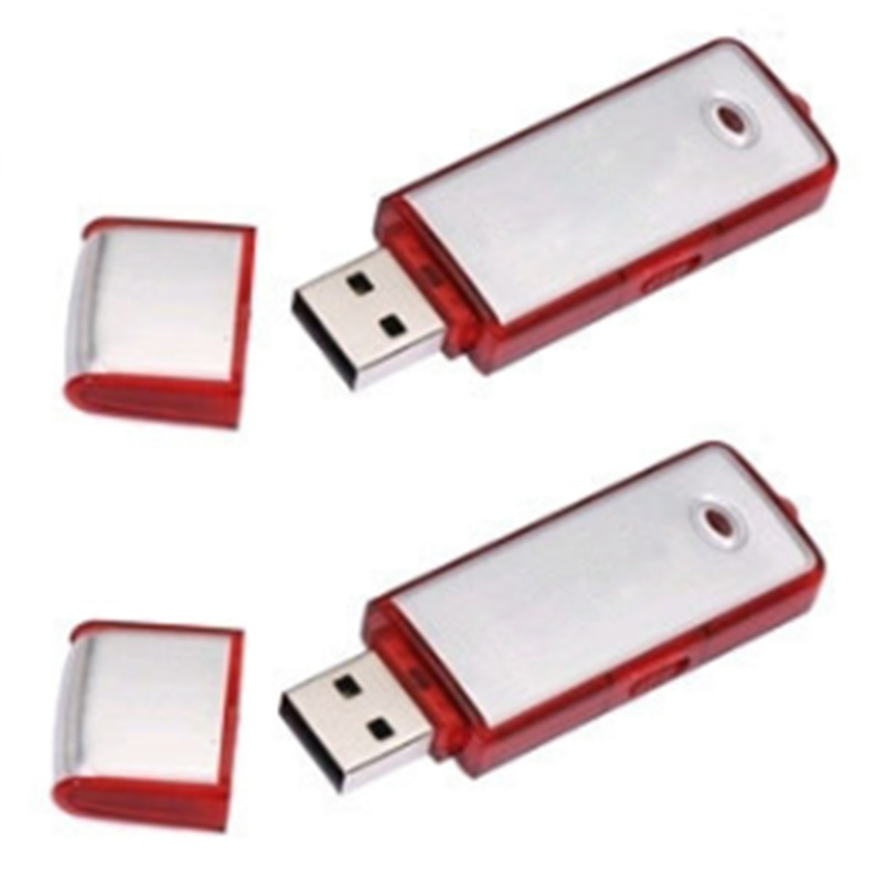 Hot Sale Factory Price Promotional Gift Plastic USB Flash Drive pictures & photos