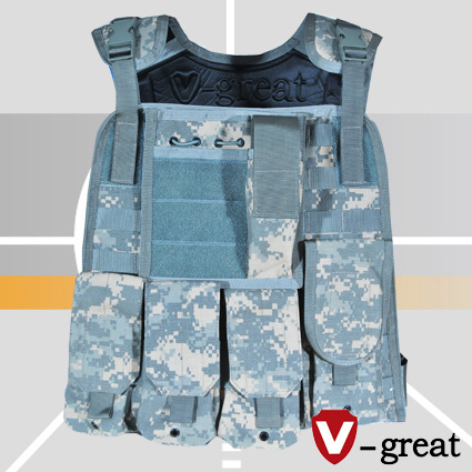 Plate Carrier Designed for Stand Alone Plates & China Plate Carrier Designed for Stand Alone Plates - China Plate ...