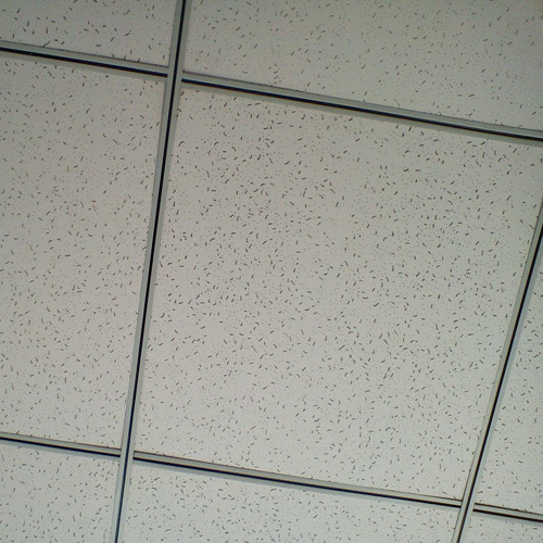 Hot Item 600 600 Cheap Qualified Mineral Fiber Ceiling Board