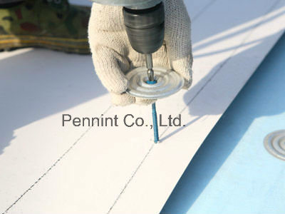 Best Quality Homogeneous/Reinforced Tpo Waterproofing Material Roofing Membrane pictures & photos
