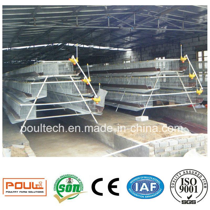 High Quality Poultry Cage Equipment