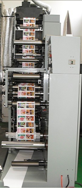 Flexo Printing Machine (LRY-330)