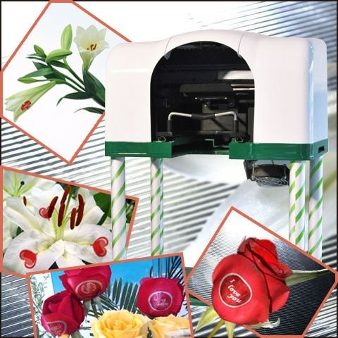 Hot Sale Popular Digital Inkjet Speaking Rose Lily Flower Printer (UN-FL-MN106)
